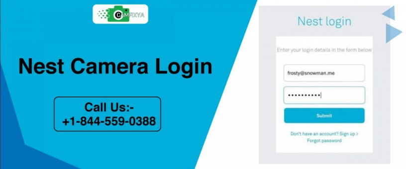 are-you-looking-for-some-experts-to-solve-the-nest-login-issue-big-0